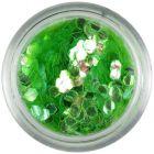 Light green confetti - hexagons aqua elements