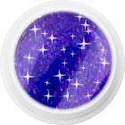 Coloured holographic UV gel – 341 Dark Purple Shadow, 5g