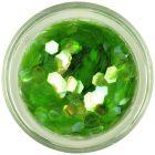 Aqua elements hexagons - light green