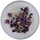 Nail art dried flowers – purple